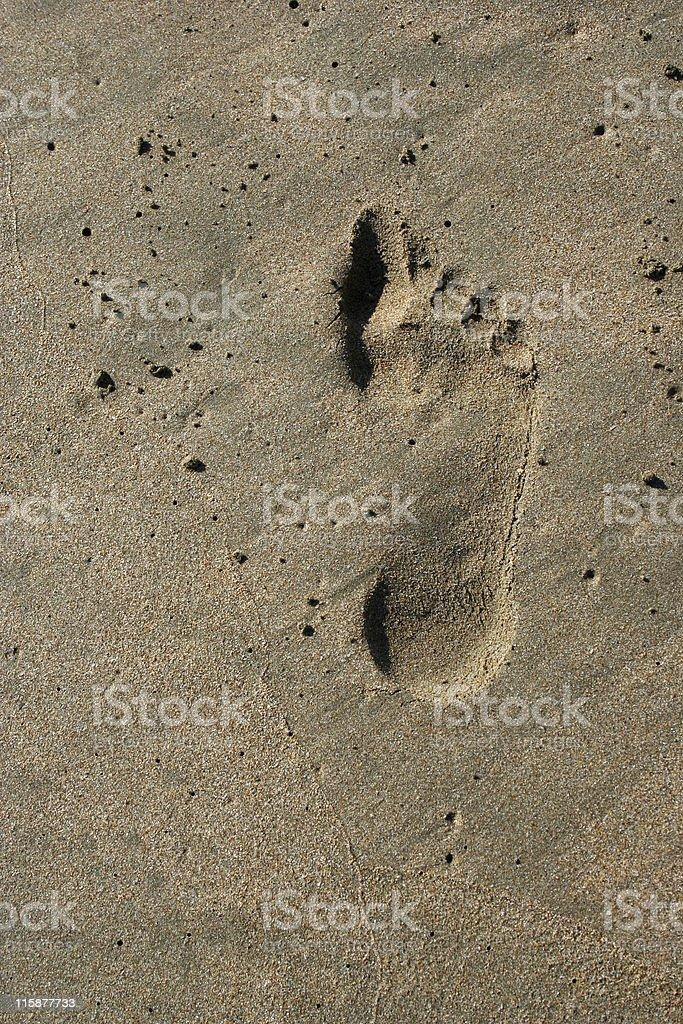 Empreintes dans le sable photo libre de droits