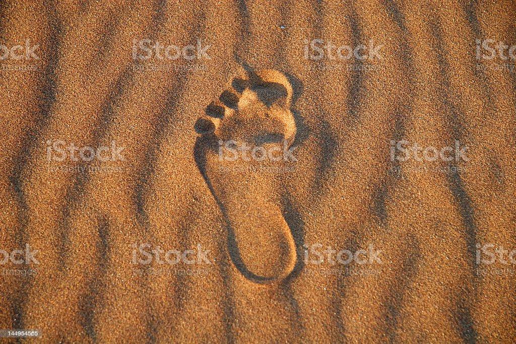 Huella en la arena foto de stock libre de derechos