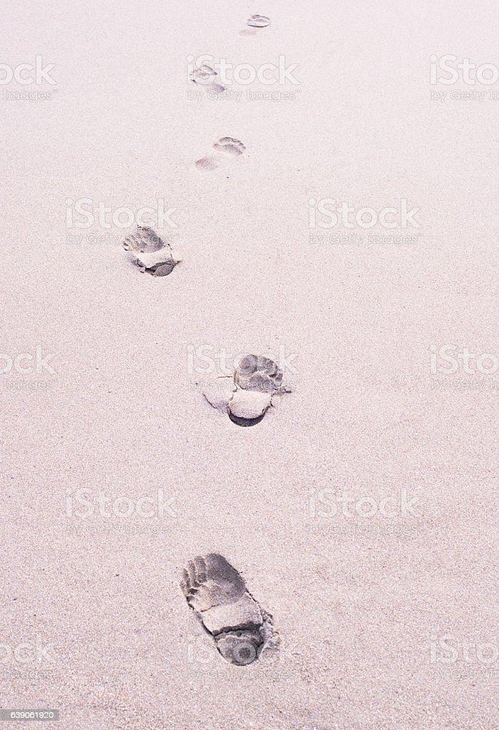 Footprint of the sandy beach stock photo