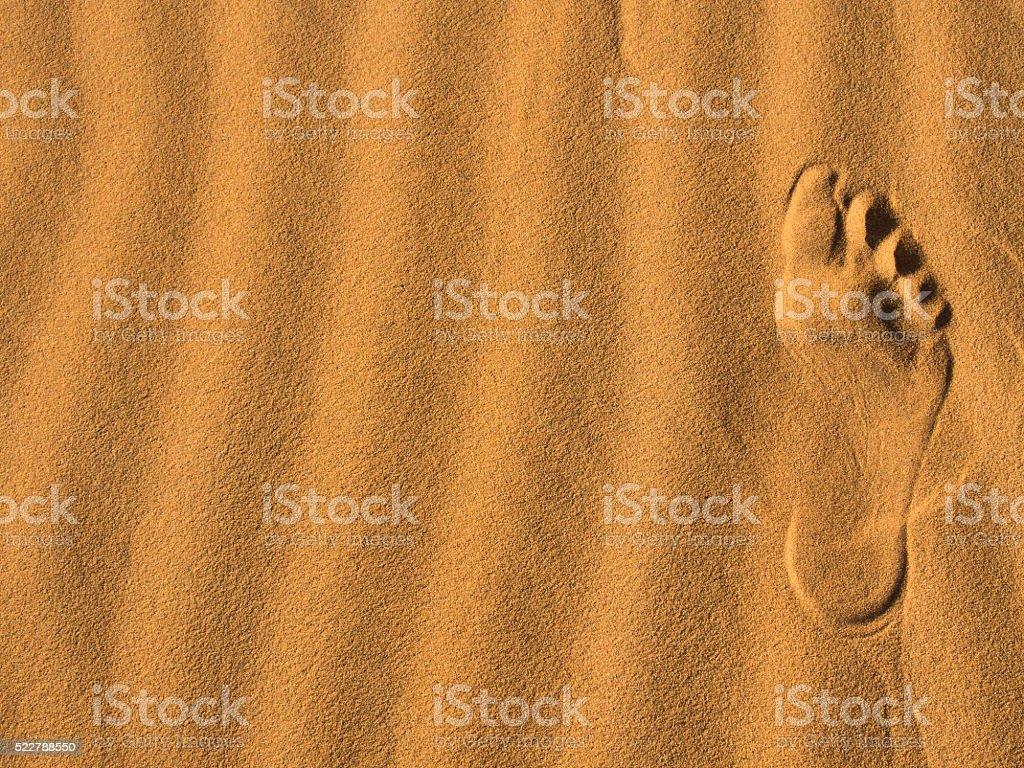 footprint on the desert stock photo