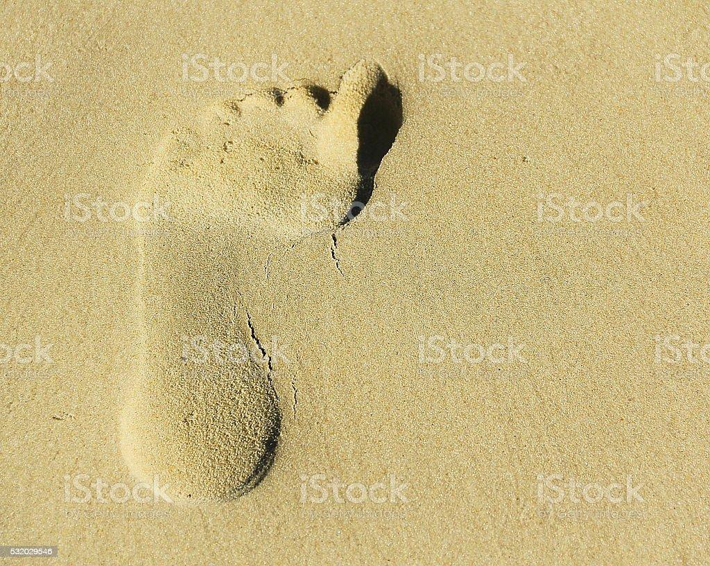 Footprint. stock photo