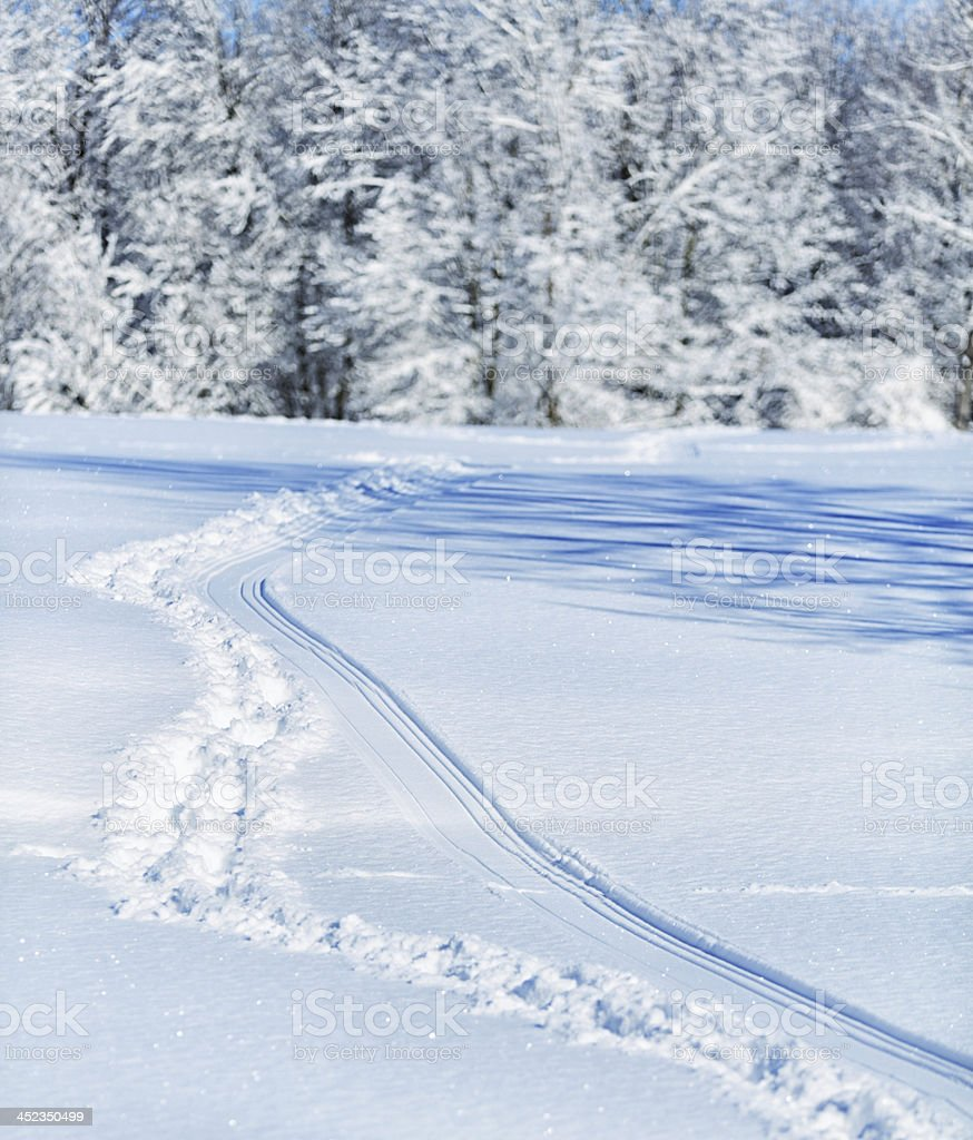 Footprint Trails in Deep Snow stock photo