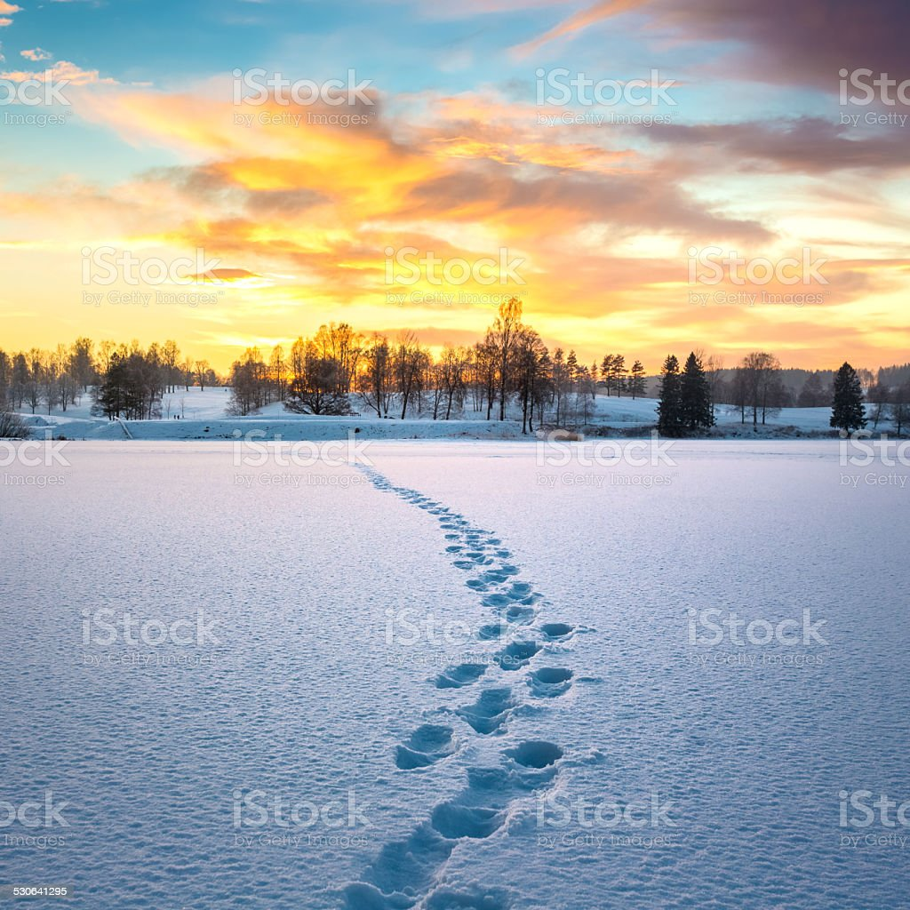 Footprints in snow at sunset, Oslo Norway stock photo