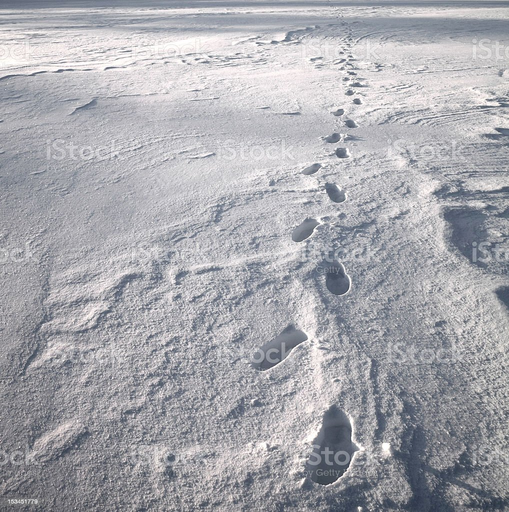 Footprints in Snow royalty-free stock photo