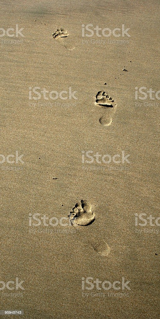 Footprints in the Damp Sand at the Beach royalty-free stock photo