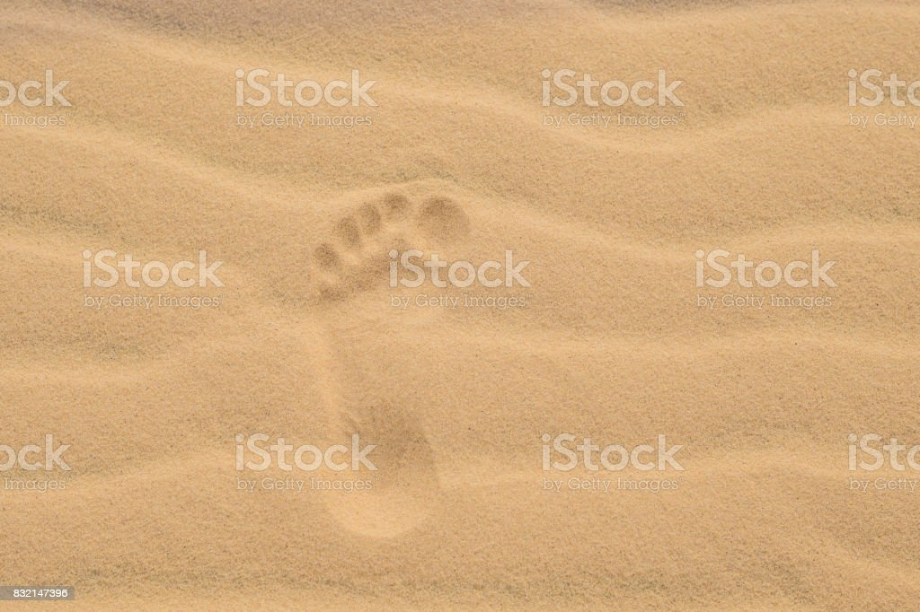 Footprints in the desert or beach sand stock photo