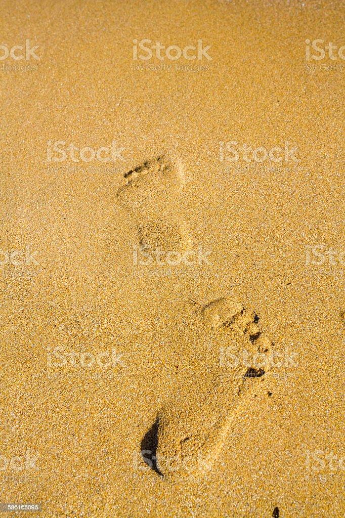 Footprints in the sand beach near the sea stock photo