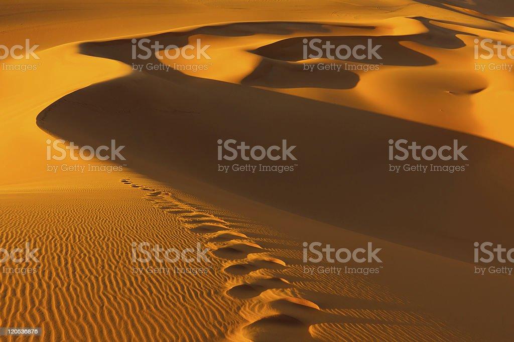 Footprints in the Sand Dunes  - Murzuq Desert, Sahara, Libya royalty-free stock photo