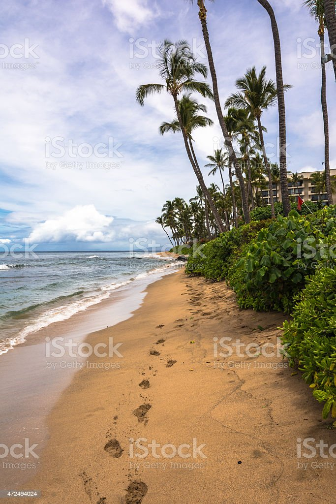 Footprints in the sand, Maui stock photo
