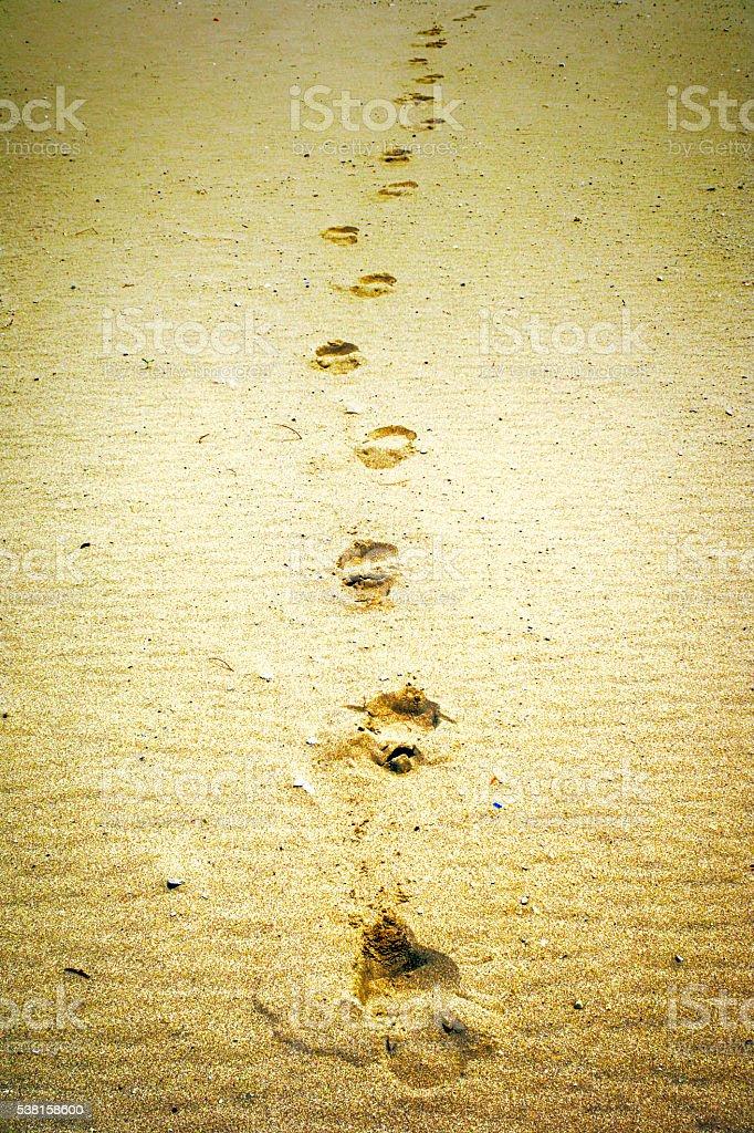 Footprints in the sand on Kenosha beach WI stock photo