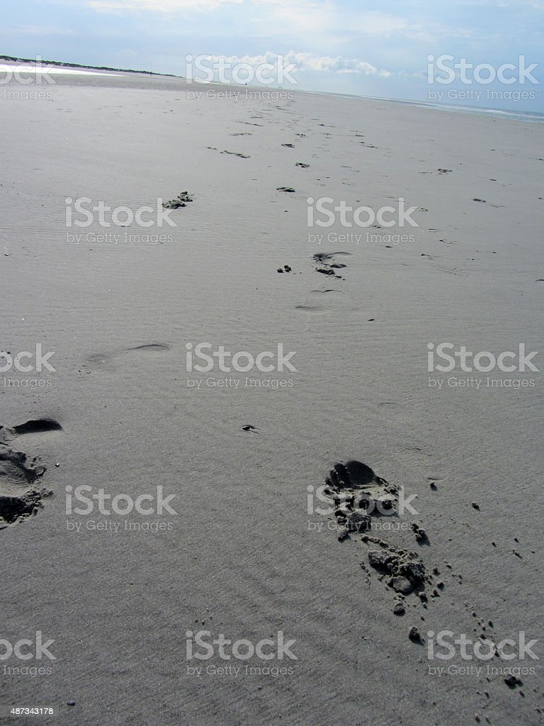 Footprints of a  couple in the sand  North Sea beach stock photo
