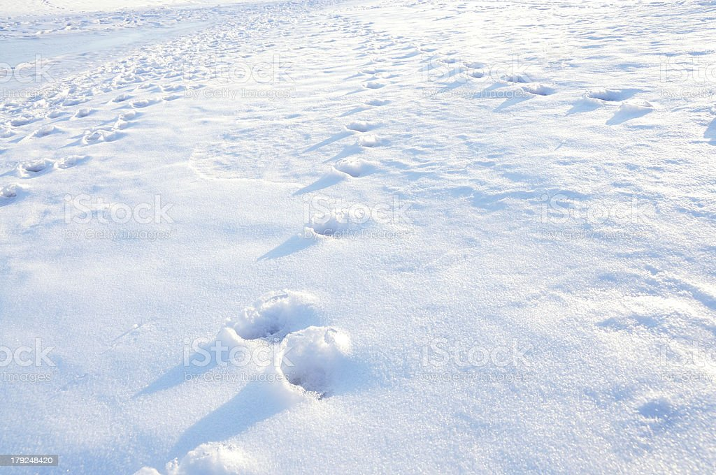 Footprints on a snow royalty-free stock photo