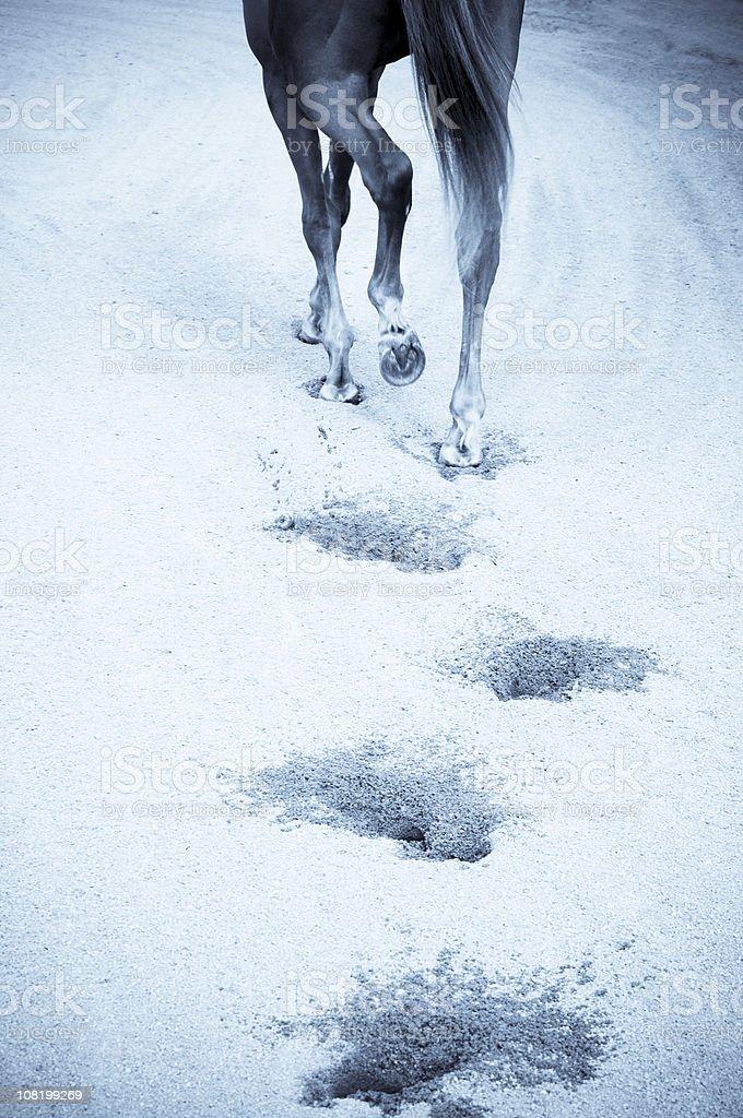 footprints, royalty-free stock photo