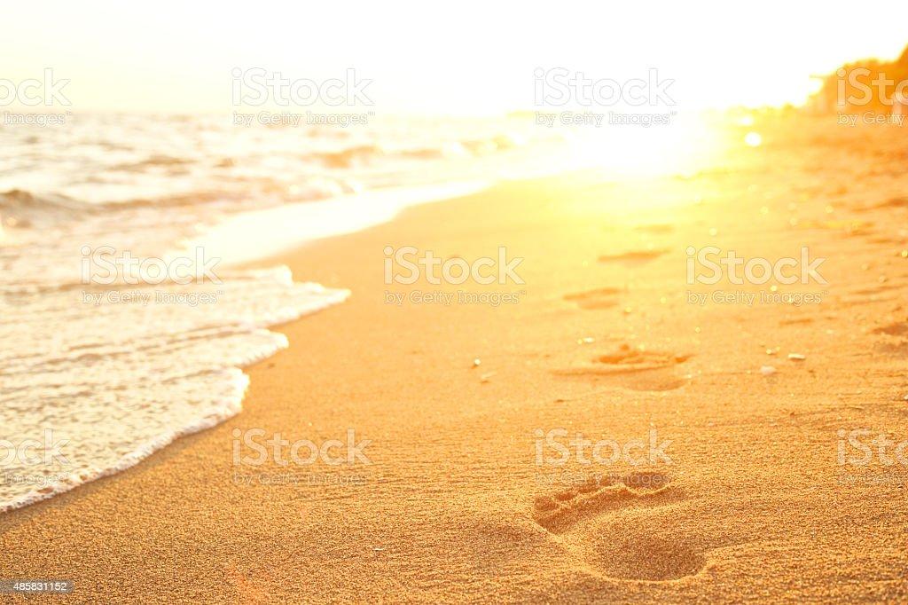 Footprints. stock photo
