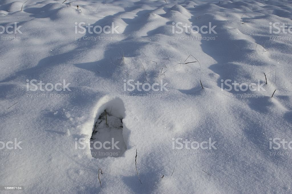 Footstep in snow royalty-free stock photo