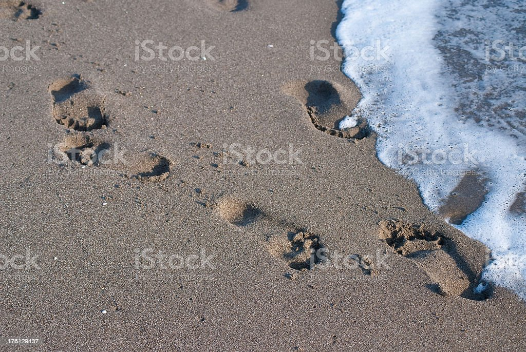footsteps at beach by the ocean stock photo