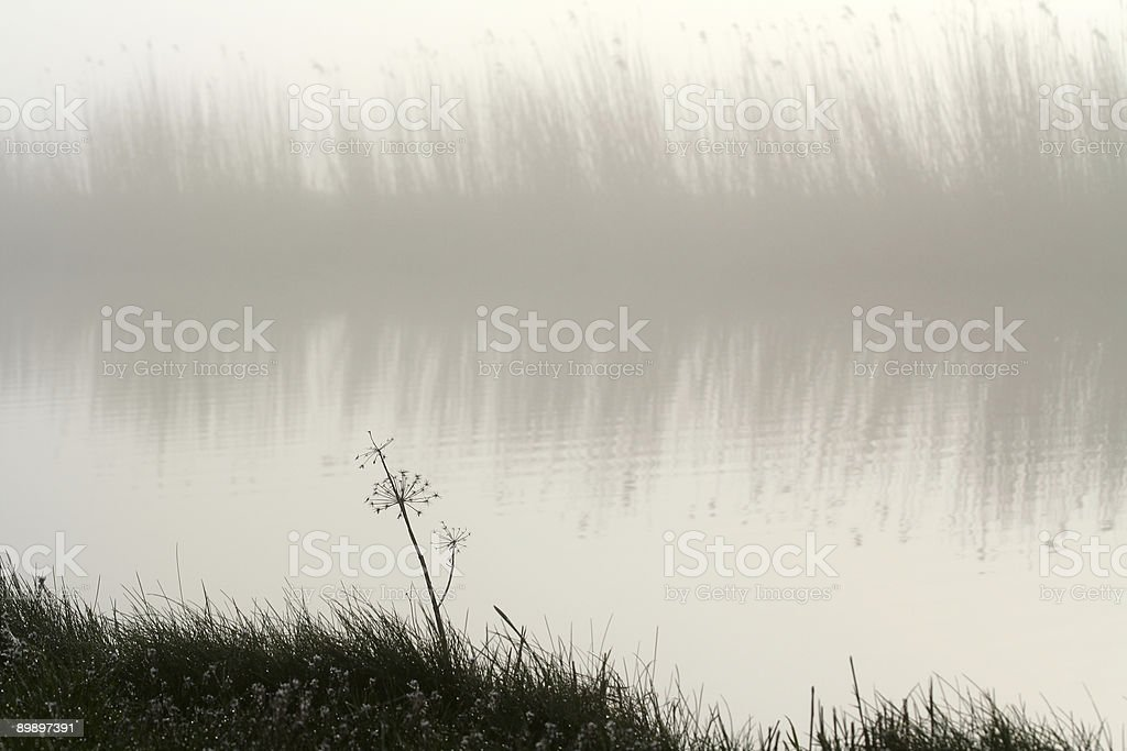 for the calendar royalty-free stock photo