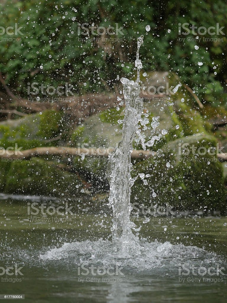 Force of water nature. stock photo