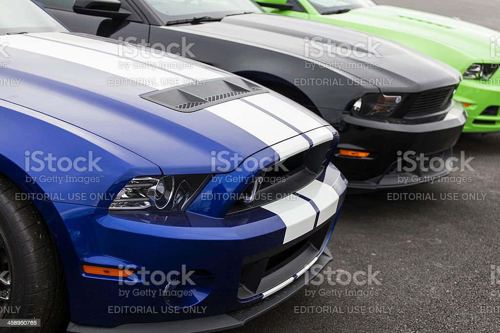 Ford and Shelby Mustangs stock photo