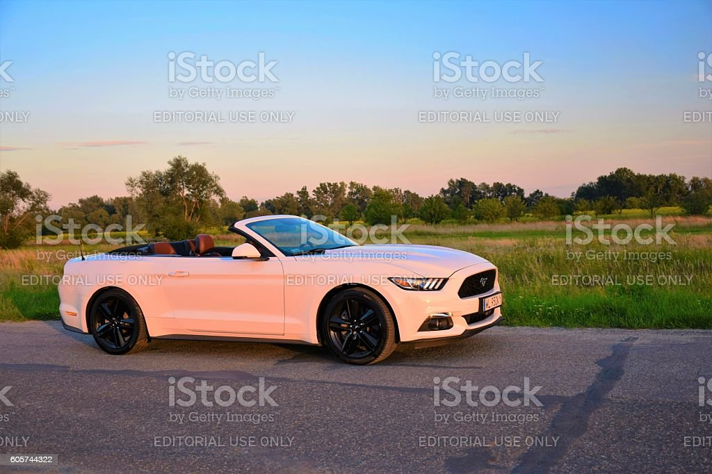 Ford Mustang on the road in the sunset stock photo