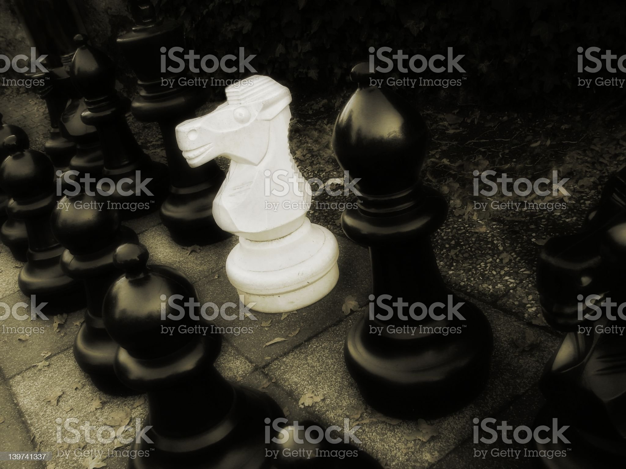 Foreigner royalty-free stock photo