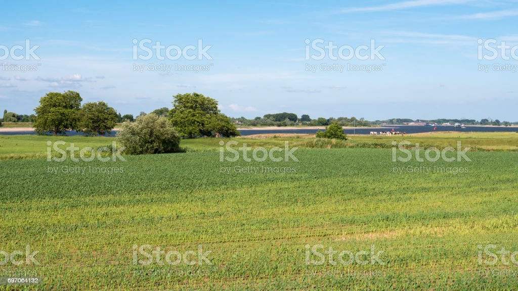 Forelands of Waal river in Bommelerwaard, Netherlands stock photo