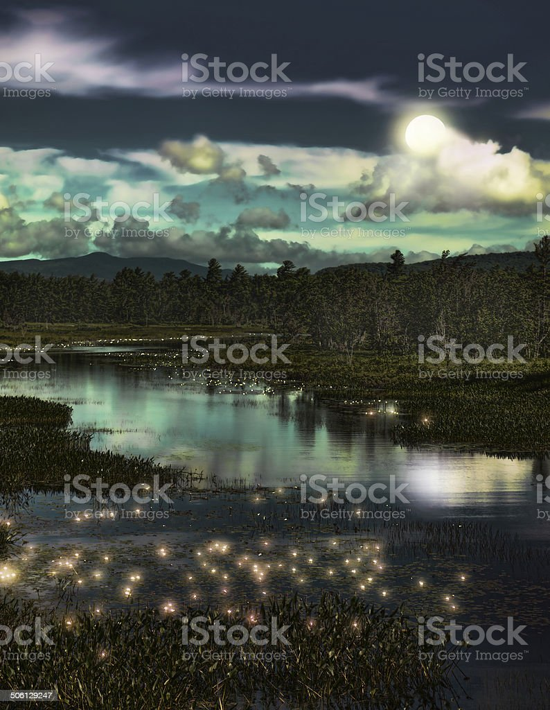 forest and fireflies stock photo