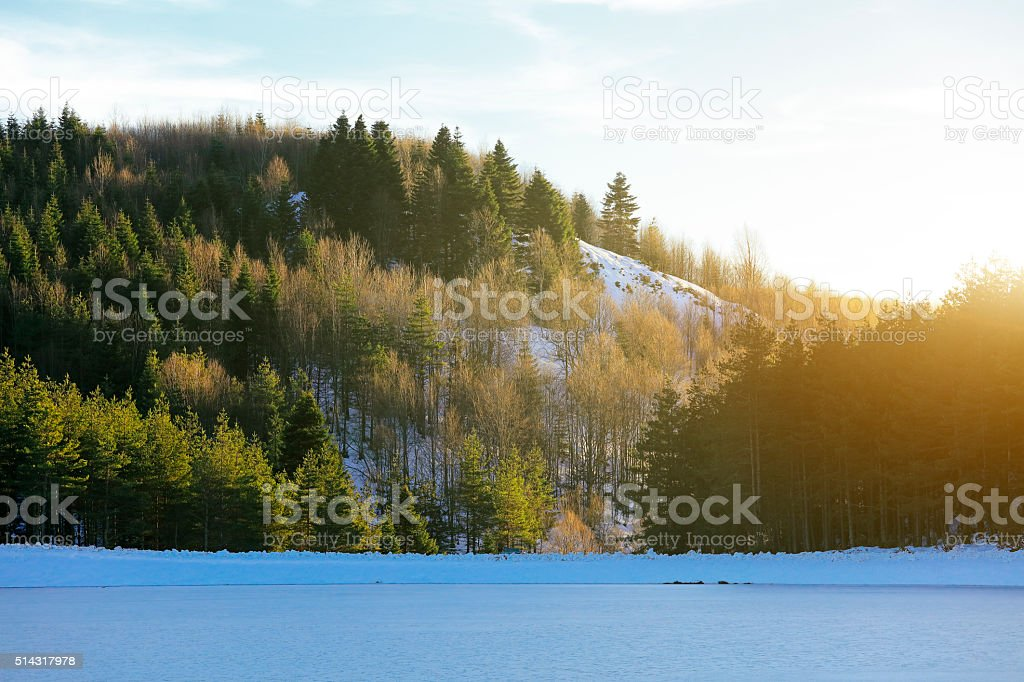 Forest and Frozen Lake at Sunset stock photo