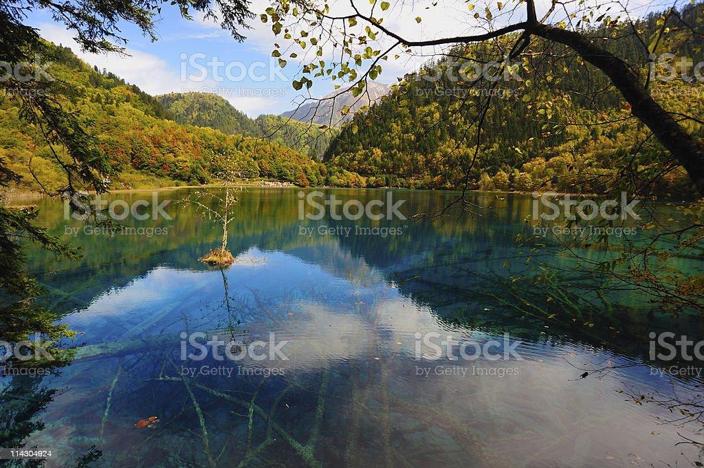 Forest and lake landscape of China jiuzhaigou stock photo