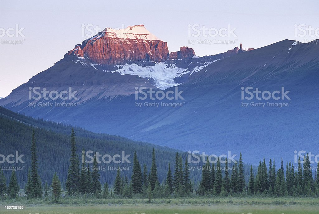 Forest and mountains - Canada, banff national park royalty-free stock photo