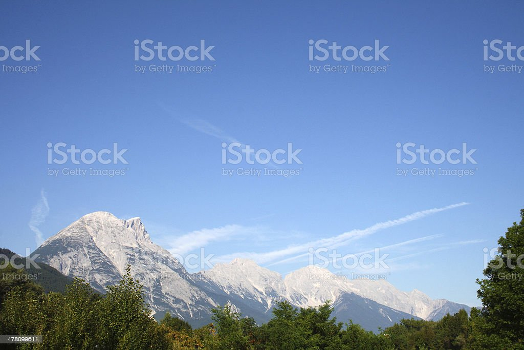 forest and mountains stock photo