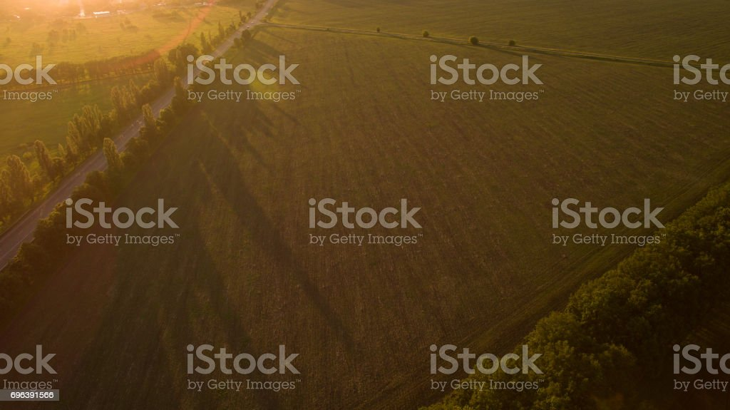 Forest and road removed from the dron at sunrise. stock photo