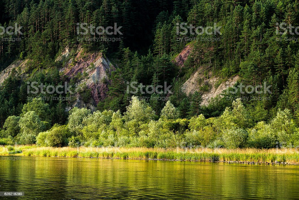 Forest and rocks reflected in river Dunajec, Slovakia stock photo