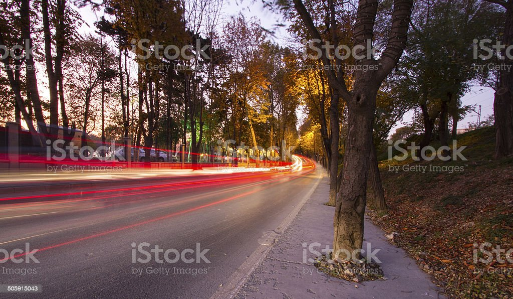 forest and traffic stock photo