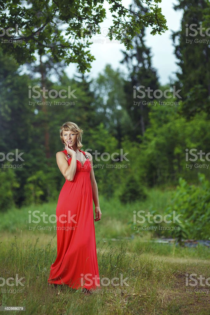 Forest Beauty royalty-free stock photo