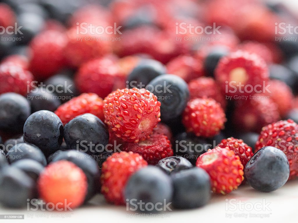 Forest berries royalty-free stock photo
