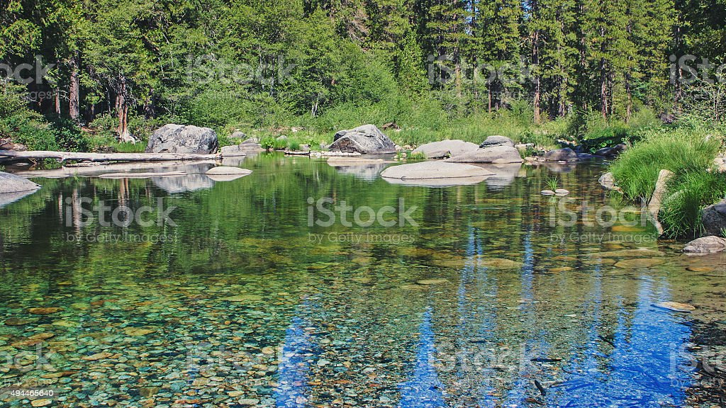 Forest creek running through the stones stock photo