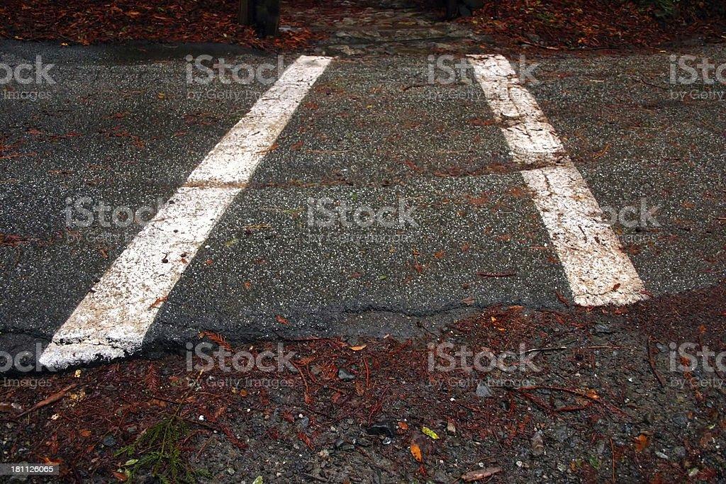 Forest Crosswalk royalty-free stock photo