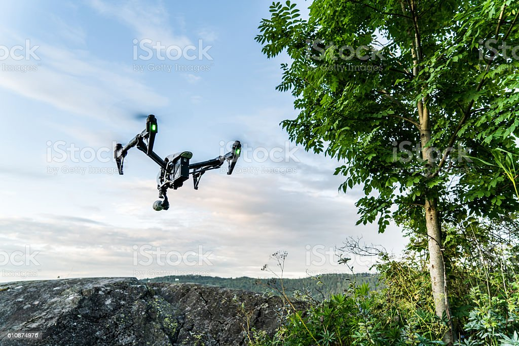 Forest Drone stock photo