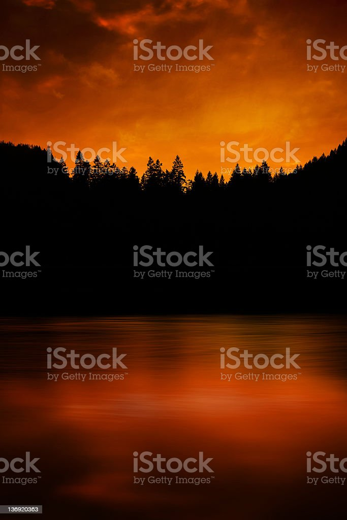 XXXL forest fire stock photo