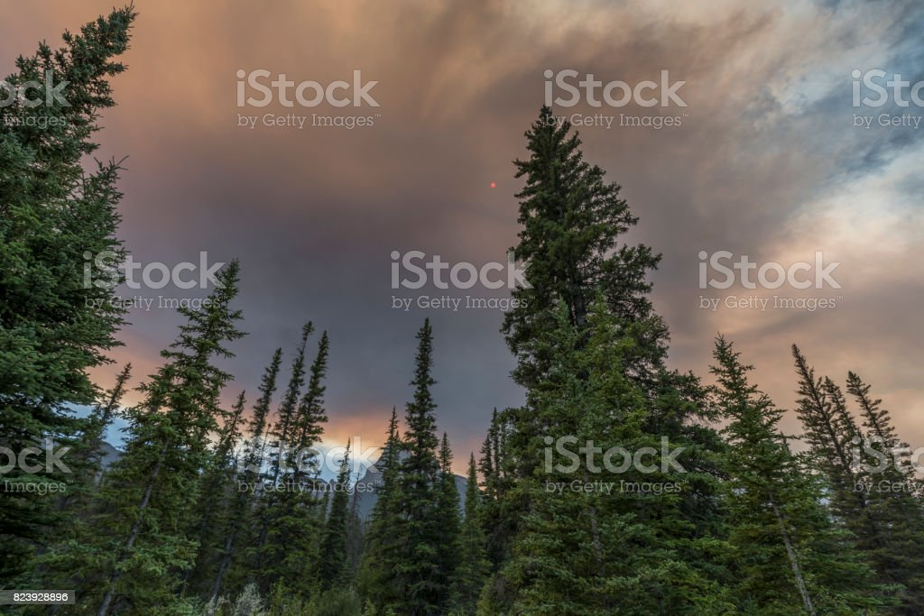 Forest Fire Smoke at Canmore stock photo