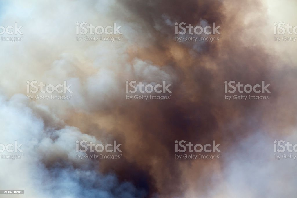 Forest Fire Smoke stock photo