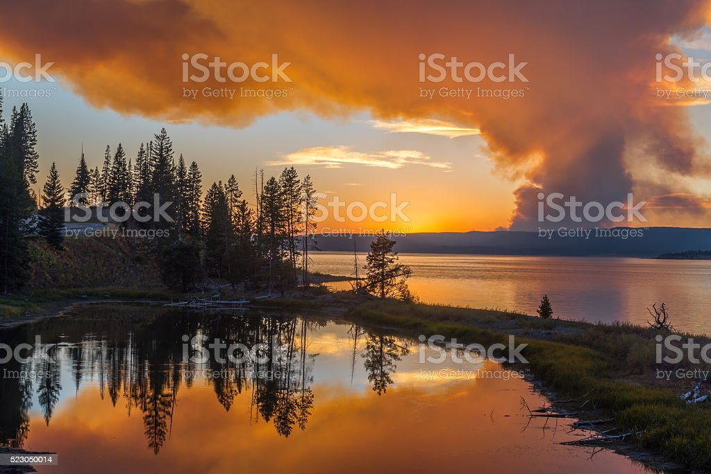 Forest fires reflected in a lake stock photo