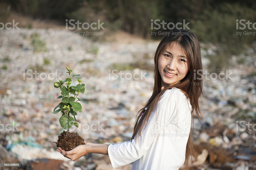 forest for life royalty-free stock photo
