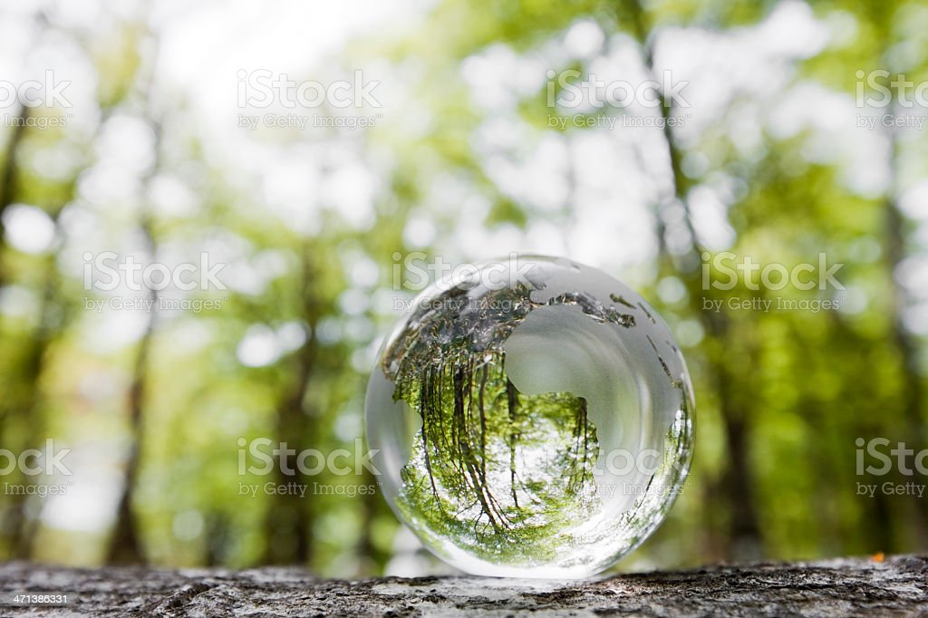 Forest Globe royalty-free stock photo