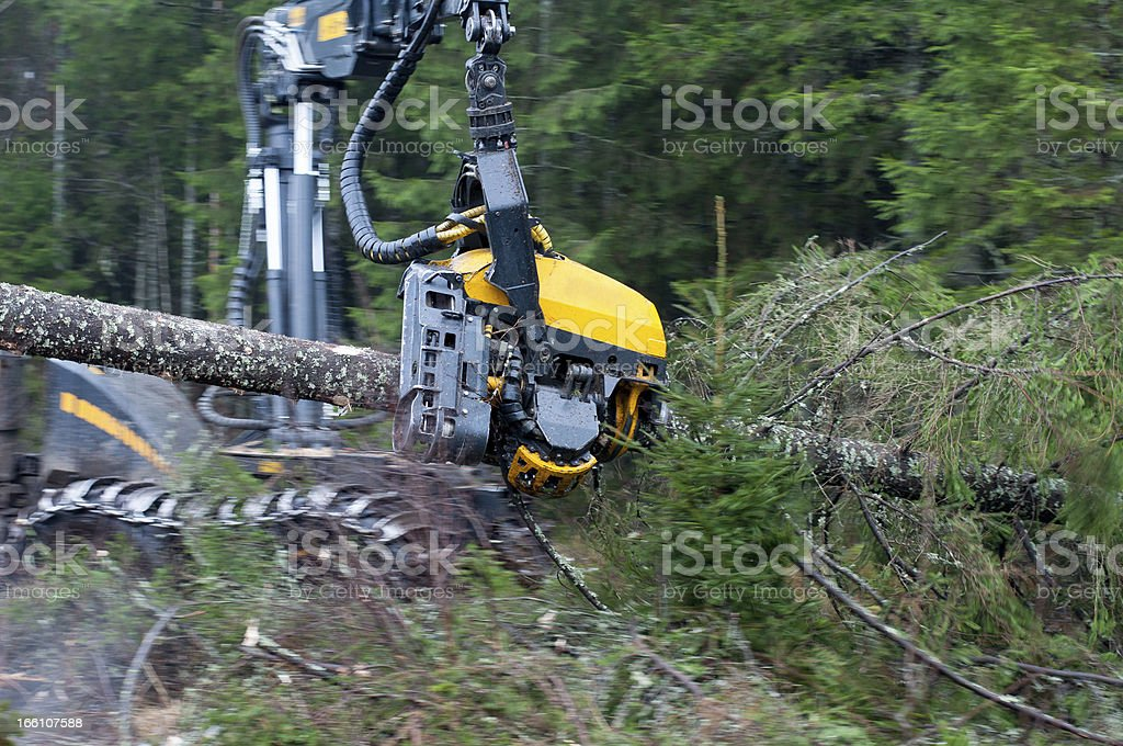 Forest Harvester royalty-free stock photo