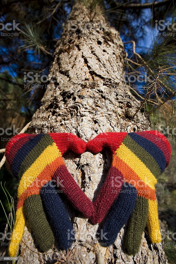 Forest Heart royalty-free stock photo