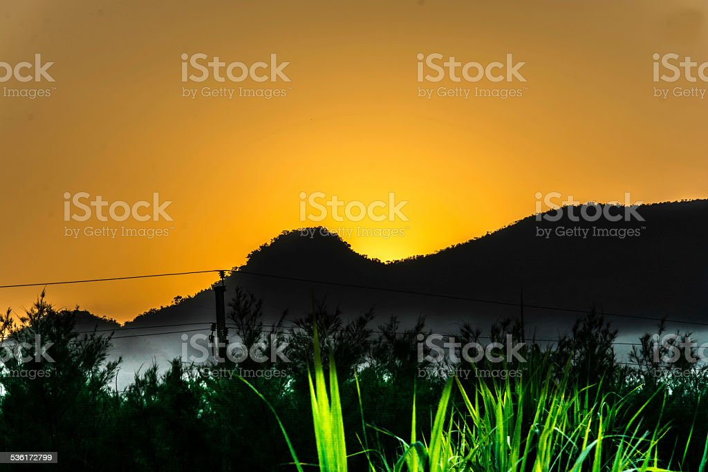 Forest Hills stock photo
