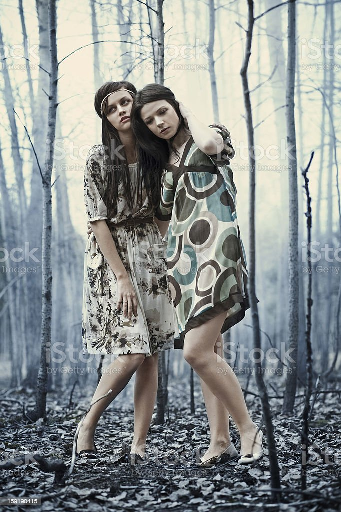 Forest horror royalty-free stock photo