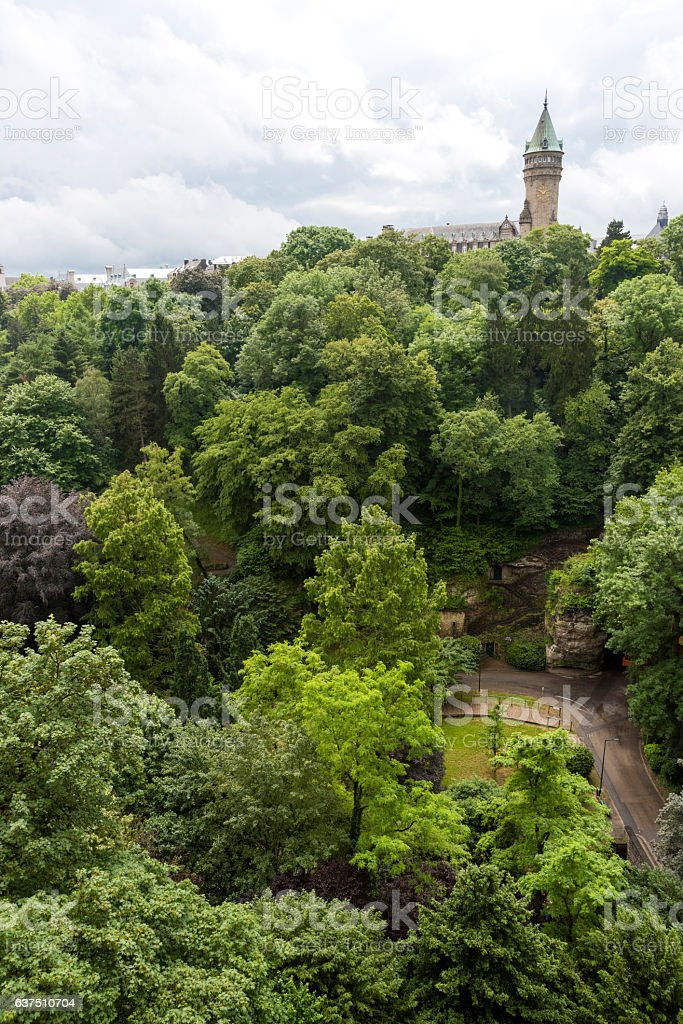 Forest in Luxembourg City stock photo